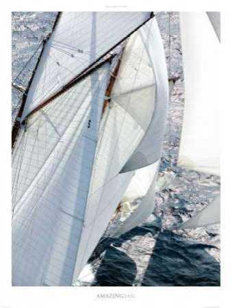 Amazing Sail
