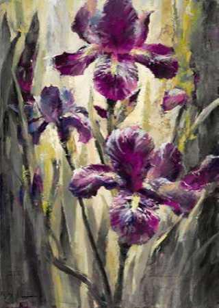 Ambient Iris 2