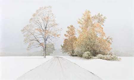 Autumn Snowfall