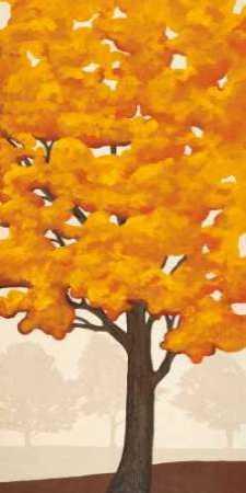 Autumns Glory II