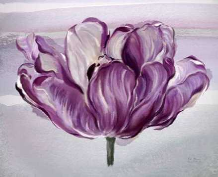 Awash In Plum Tulip