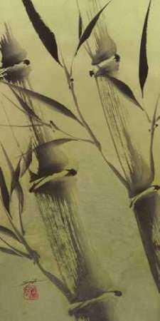 Bamboos Peace