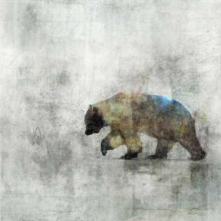 Bear Spring