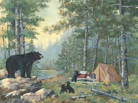 Bears Campsite