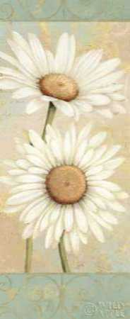 Beautiful Daisies I
