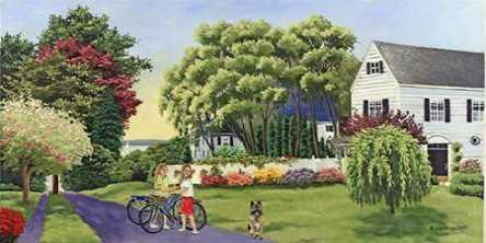Biking Summer Street