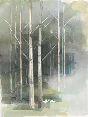 Birch Grove II