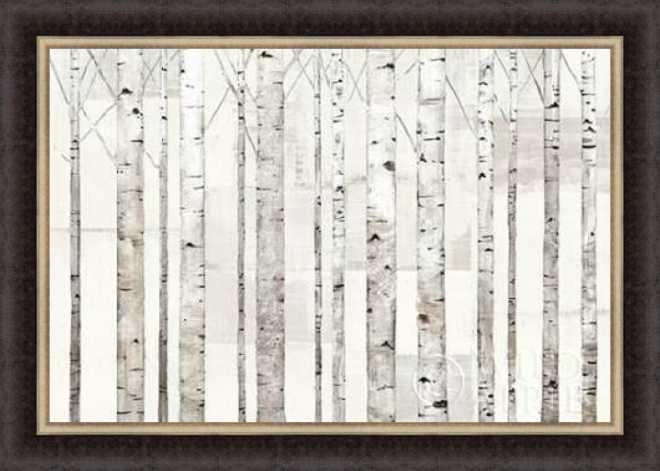 Birch Trees on White by Avery Tillmon