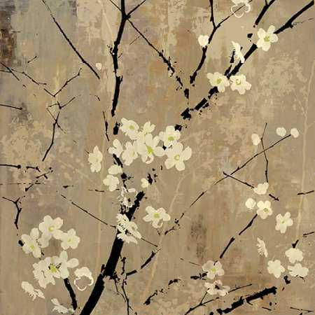Blossom Abstracted