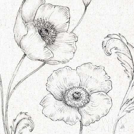 Blossom Sketches I