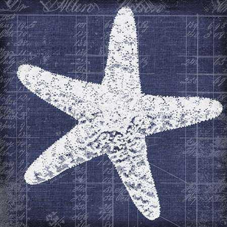 Blue Print Star Fish