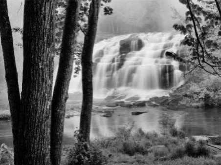 Bond Falls and Trees