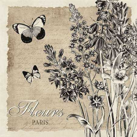 BORDERED FLEURS PARIS