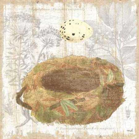 Botanical Nest I