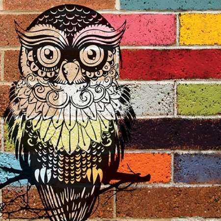 BRICK WALL OWL