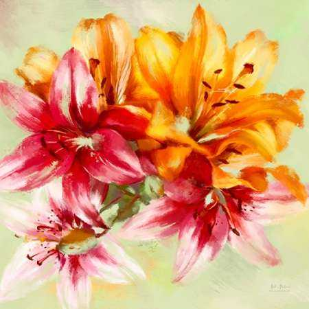 Bursting Lillies 1