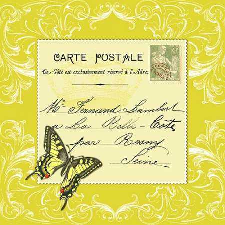 Butterfly Carte Postale Cirtrus