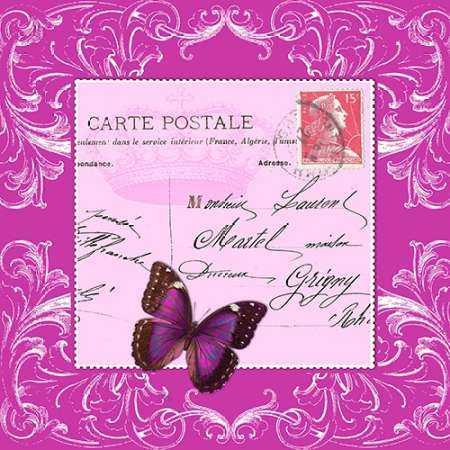 Butterfly Carte Postale Pink