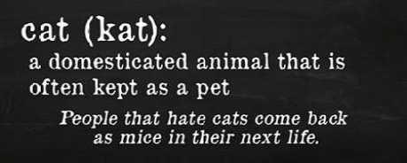 Cat Definition