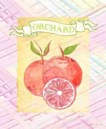 Citrus Orchard 2