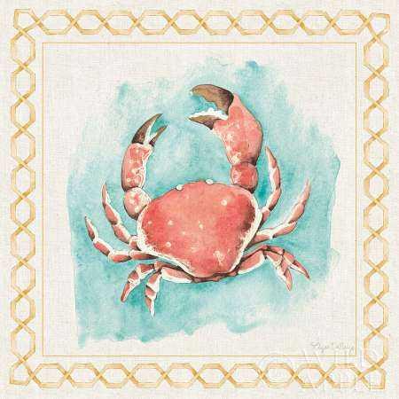 Coastal Mist Crab