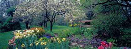 Country garden Old Westbury Gardens Long Island