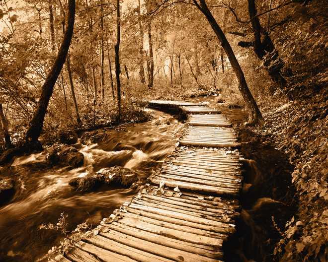 Creekside Walk II