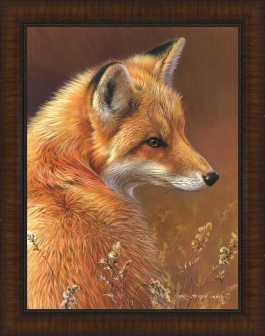 Curious - Red Fox by Joni Johnson-Godsy