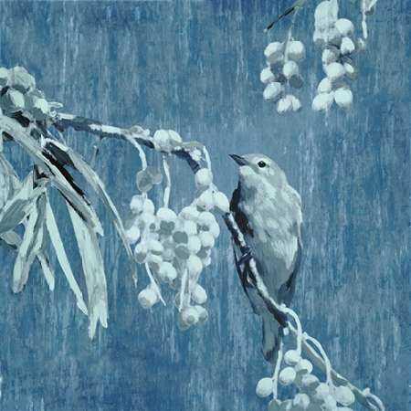 Denim Songbird II