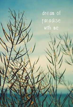 Dream of paradise