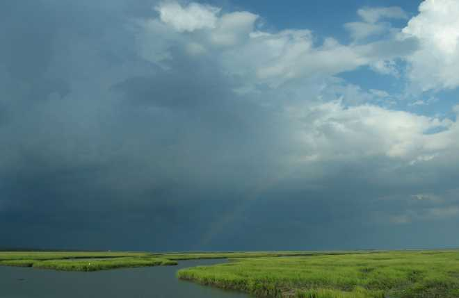 Estuary Rainbow I by Bill Kellett