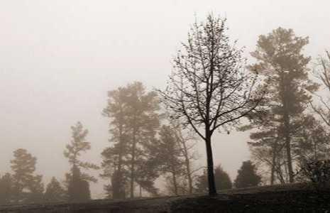 Evening Mist 2