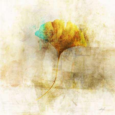 Falling Ginko Leaf