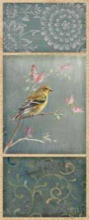 Female Goldfinch - Wag