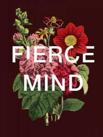 Fierce Mind