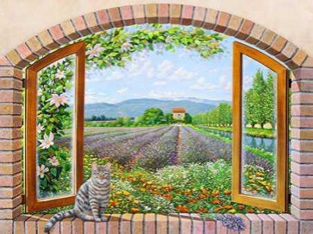 Finestra in provenza