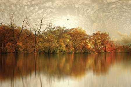 Floating Foliage