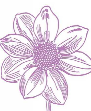 Florette I