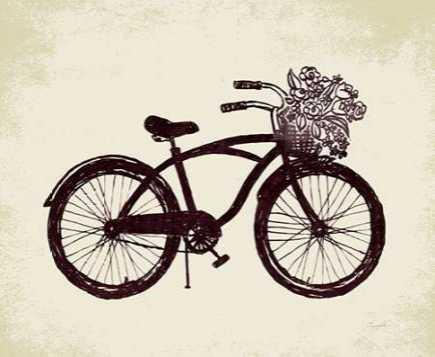 Flower Basket Bike