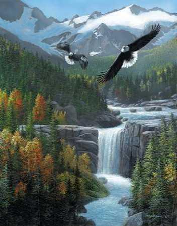 Freedom Falls