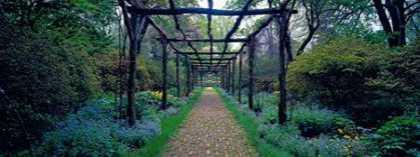 Garden path Old Westbury Gardens Long Island