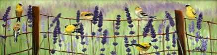 Gold Finch and Lavendar
