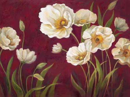Harmony Poppies
