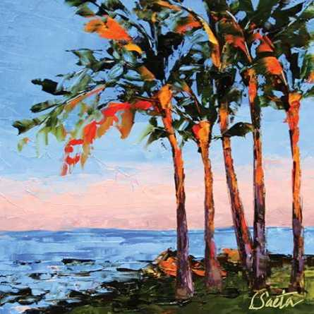 Hawaii Shores
