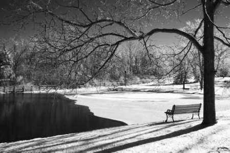 Heritage Pond in Winter
