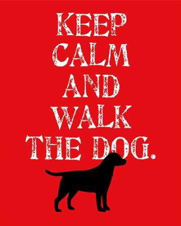 Keep Calm - Labrador