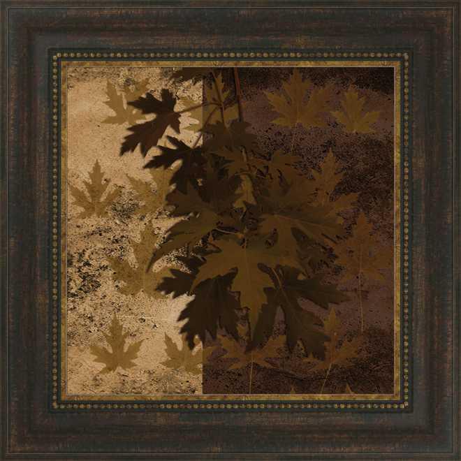 Leaf Study Maple