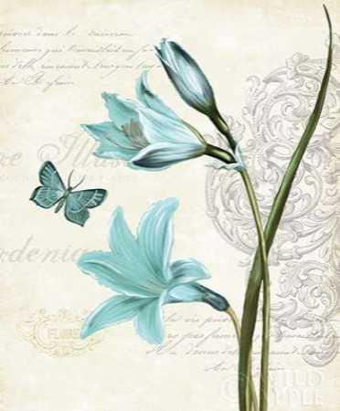 Lila Bleu II