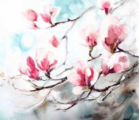 Magnolia - Spring