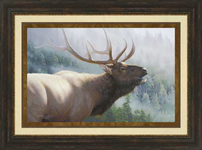 Misty Mountain Challenge by Derek Wicks